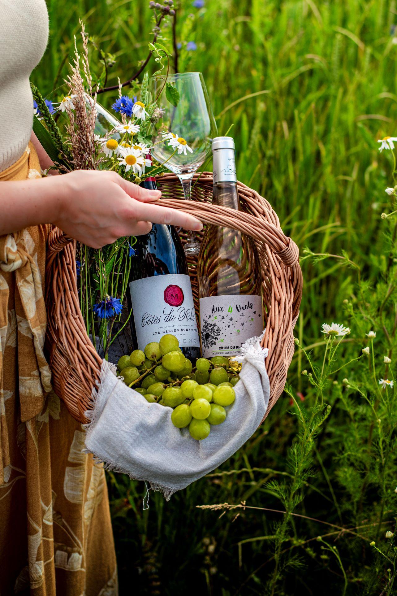 Picknick mit Côtes du Rhone Weinen